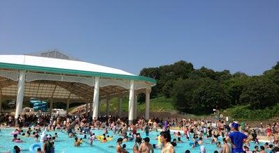 Photo of Pool こどもの国 プール at 青葉区奈良町700, Yokohama 227-0036, Japan