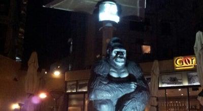 Photo of Cafe Gorilla at Israel