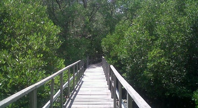Photo of Theme Park mangrove forest at Indonesia