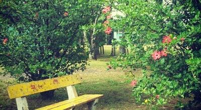 Photo of Park Parque Esportivo Eduardo Gomes (Parcão) at Av. Guilherme Schell, 3600, Canoas 92310-070, Brazil