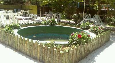 Photo of Tea Room Aile çay bahçesi at Turkey