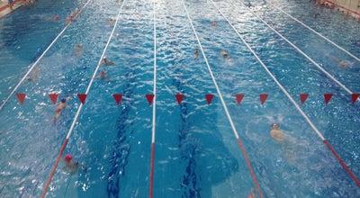 Photo of Pool Sakarya Olimpik Yüzme Havuzu at Çark Caddesi, Sakarya, Turkey