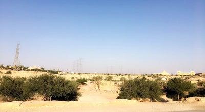 Photo of National Park منتزه الملك سلمان البري | King Salman Park at Saudi Arabia
