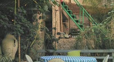 Photo of Moroccan Restaurant The Ruined Garden at 15 Derb Idrissy, Siaj, Fes, Morocco