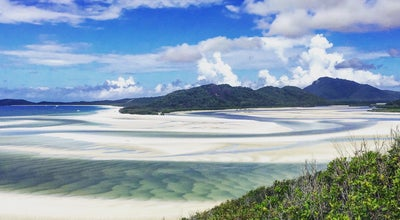 Photo of Beach Whitehaven Beach at Whitsunday Island, QL 4802, Australia