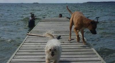 Photo of Lake Lake Simcoe at Canada