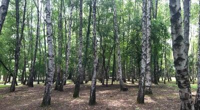 Photo of Park Солнечный остров at Солнечный Остров, Краснодар, Russia