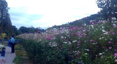 Photo of Park 서울푸른수목원 at 구로구 연동로 240, 구로구, South Korea
