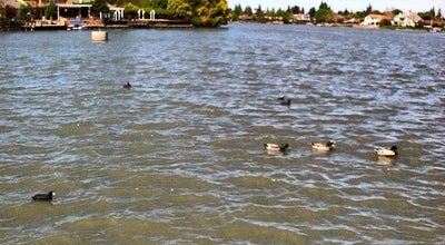 Photo of Lake Quail Lake at Stockton, CA 95207, United States