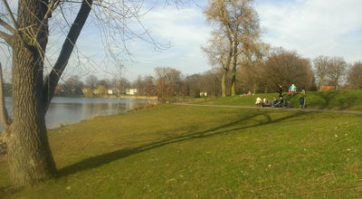 Photo of Lake IJzeren Vrouw at Prins Hendrikpark, 's-Hertogenbosch 5213, Netherlands