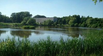 Photo of Lake Летнее озеро at Летняя Ул., Kaliningrad, Russia