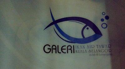 Photo of Science Museum Galeri ikan air Tawar Kuala Selangor at Malaysia