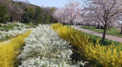 Photo of Park 山田池公園 at 山田池公園1-1, 枚方市 573-0167, Japan