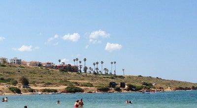 Photo of Beach Fener Koyu at Çeşme, Turkey