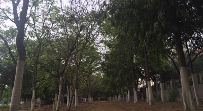 Photo of Park Leisure Valley at Leisure Valley Rd, Sector 29, Gurgaon, India