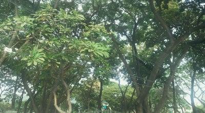 Photo of Park Parque de Los Ceibos at Los Ceibos, Guayaquil, Ecuador