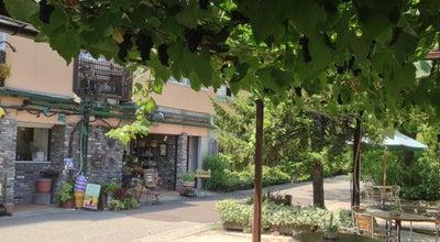 Photo of Wine Bar ぶどうの木 at 岩出町ハ50-1, 金沢市 920-0171, Japan
