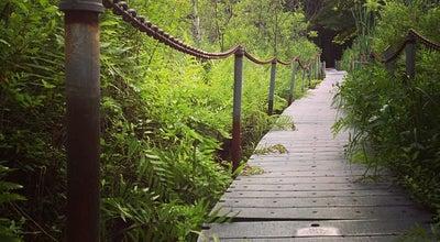 Photo of Playground West Lake Nature Preserve at Portage, MI 49002, United States