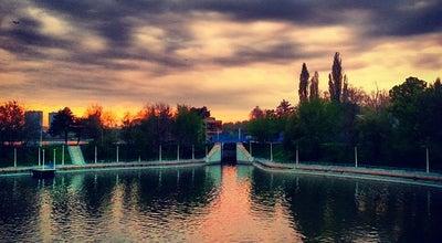Photo of Park Parcul Herăstrău at Bd. Aviatorilor/șos. Nordului, București, Romania
