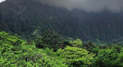 Photo of Botanical Garden Ho'omaluhia Botanical Garden at 45-680 Luluku Rd, Kaneohe, HI 96744, United States