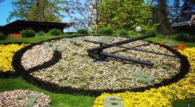 Photo of Park Jardin Anglais at Quai Du Général Guisan, Genève 1204, Switzerland