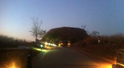 Photo of Field Cradle of humankind at South Africa