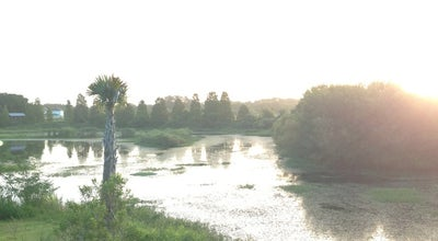 Photo of Lake Joe's Creek Greenway Park at 46th Ave N & 43rd St N, Saint Petersburg, FL, United States