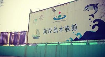 Photo of Aquarium 新屋島水族館 at 屋島東町1785-1, 高松市 761-0111, Japan