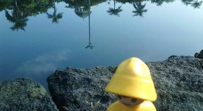 Photo of Lake Water Polder Tawang at Jl. Merak, Semarang 50137, Indonesia