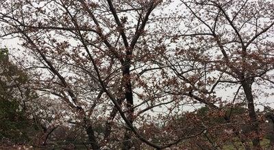 Photo of Park 緑ケ丘公園 at 緑ケ丘1 / 緑ケ丘2, 伊丹市 664-0012, Japan