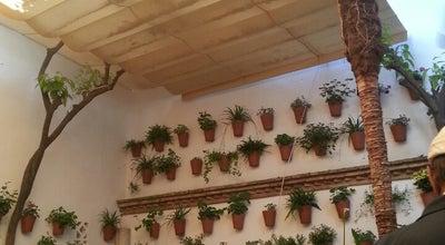 Photo of Restaurant Los Patios de la Marquesa at C. Manríquez, 4, Córdoba, Andalusia, Spain