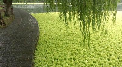 Photo of Lake 华家池 at Hangzhou, Zh, China