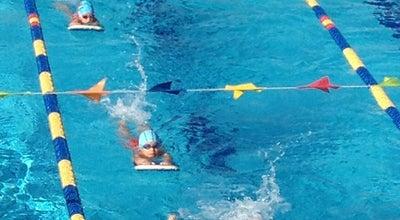 Photo of Pool Δημοτικό Κολυμβητήριο Πετρούπολης at Ελαιών, Πετρούπολη 132 31, Greece