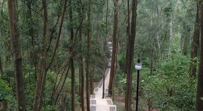 Photo of Park 莲花山公园 Lianhua Hill Park at 6026 Hongli Rd., Shenzhen, Gu, China