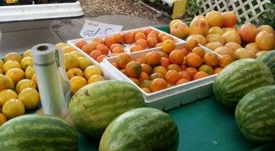Photo of Food Truck Kathy's Fresh Produce at 1414 S Orange Blossom Trl, Apopka, FL 32703, United States