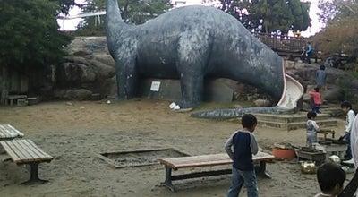 Photo of Playground 太陽の丘公園 at 伊福町1-9-13, 岡山市 北区, Japan