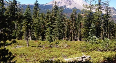 Photo of National Park Lassen Volcanic National Park at Lassen Volcanic National Park, Mineral, CA 96063, United States