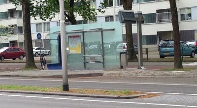 Photo of Bus Stop Halte Paletplein at Baden Powelllaan, Tilburg, Netherlands