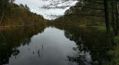 Photo of Lake Slätta Damm at Slätta Damm, Göteborg 417 27, Sweden