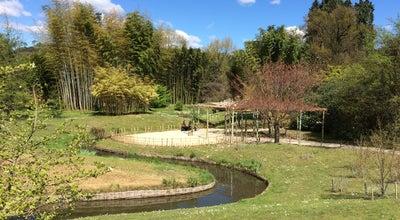 Photo of Botanical Garden Bambouseraie d'Anduze at 552 Rue De Montsauve, Générargues 30140, France