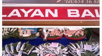 Photo of Fish Market Çağlayan Balıkçılık at Turkey