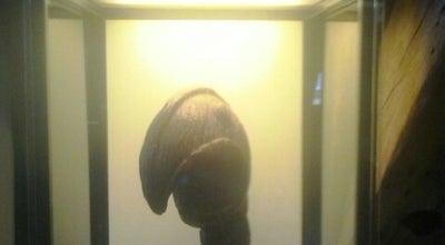 Photo of History Museum Vleeshuismuseum at Grote Markt, Dendermonde, Belgium