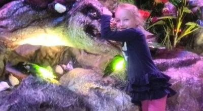 Photo of Theme Park ДинозавриЯ at Притыцкого 29, Минск, Belarus