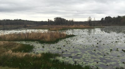 Photo of Lake Piney-Z lake at 4930 Heritage Park Blvd, Tallahassee, FL 32311, United States