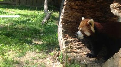 Photo of Zoo Binghamton Zoo at Ross Park at 60 Morgan Rd, Binghamton, NY 13903, United States