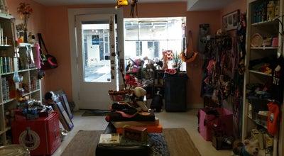 Photo of Pet Store Tudor Paws at 5 Tudor City Pl, New York, NY 10017, United States