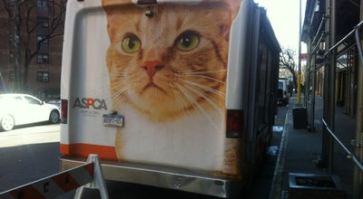 Photo of Animal Shelter ASPCA Adoption Center at 424 E 92nd St, New York, NY 10128, United States