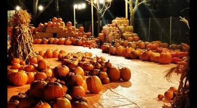Photo of Playground Pick Of The Patch Pumpkin Patch at El Camino Real, Sunnyvale, CA, United States