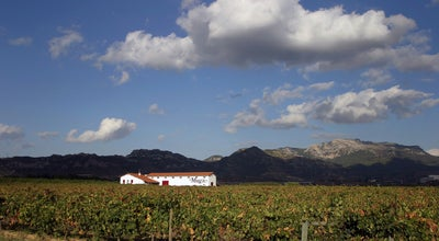 Photo of Winery Bodegas Muga at Barrio De La Estación, S/n, Haro 26200, Spain