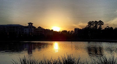Photo of Park Town Green Park at 2099 Lake Robbins Dr, The Woodlands, TX 77380, United States